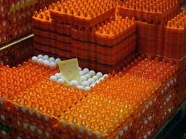 Sauder's receives eggs from 80 private farms in Pennsylvania, Maryland and Ohio.