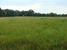 This is the Wheatfield. It's where another man with a famous connection was mortally wounded. His name was Gen. Paul Jones Semmes.