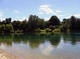 Popular species of fish found in the lake include: yellow perch&#x3B; bluegill&#x3B; northern pike&#x3B; crappie&#x3B; largemouth bass&#x3B; catfish&#x3B; muskellunge and tiger muskellunge.