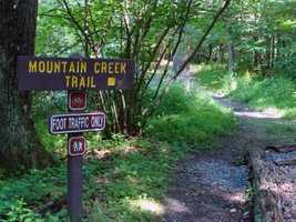 The Mountain Creek Trail is 1.4 miles long and links the bicycle trail to Fuller Lake and the Icehouse Road to Laurel Lake. The trail takes hikers through forests and wetlands as it follows Mountain Creek downstream to Laurel Lake. Deer, heron, waterfowl and beaver can be seen along the trail.