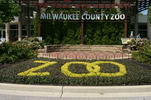 For more information about the Milwaukee County Zoo, including hours and admission rates click here to visit their website.