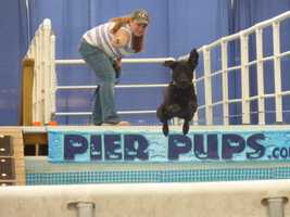 Pier Pups again performed at the 2012 Wisconsin State Fair.