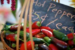 Hot peppers:  Turn up the heat when you get stuffed up!