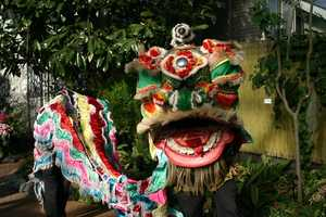 The Mitchell Park Conservatory (aka The Domes) will host Chinese New Year celebration February 1-2.