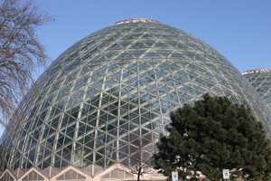 For more information about this and other exhibits at the Domes click here.