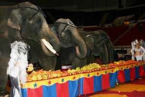 Click here for more information about the circus including how to order tickets.