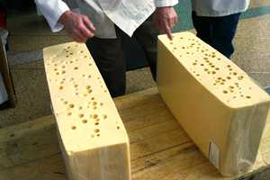This block of Swiss Cheese was nearly 200 pounds (now two 100 pound blocks!)