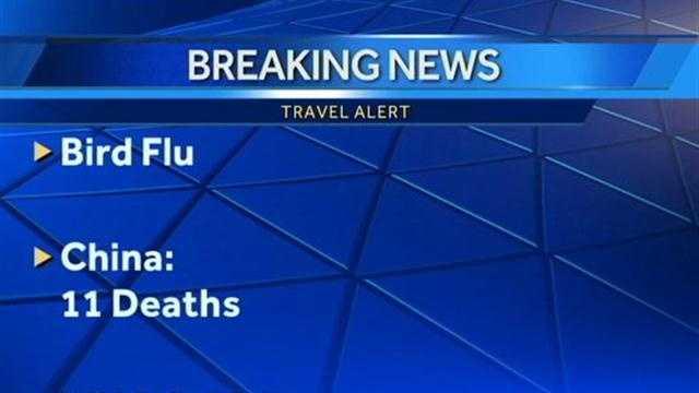 Bird flu graphic