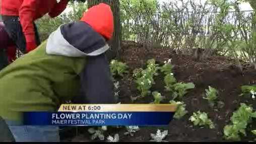 2013 planting day