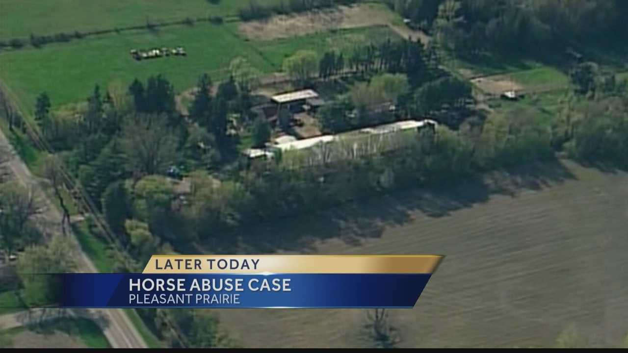 Two owners of a Pleasant Prairie horse farm will appear in court Tuesday, accused of multiple counts of animal neglect.