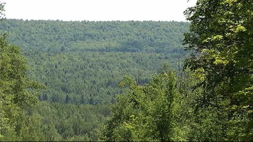 Gogebic Taconite wants to dig a huge open pit iron ore mine in the Penokee Hills on the border of Iron and Ashland counties.