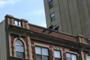 This location at 6th Street & Wisconsin Avenue in downtown Milwaukee may have had the hardest time getting to the roof.