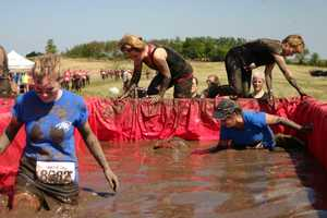 Each Dirty Girl Mud Run has a unique mix of obstacles depending on the venue.