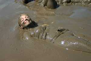 Just hanging around in the mud.