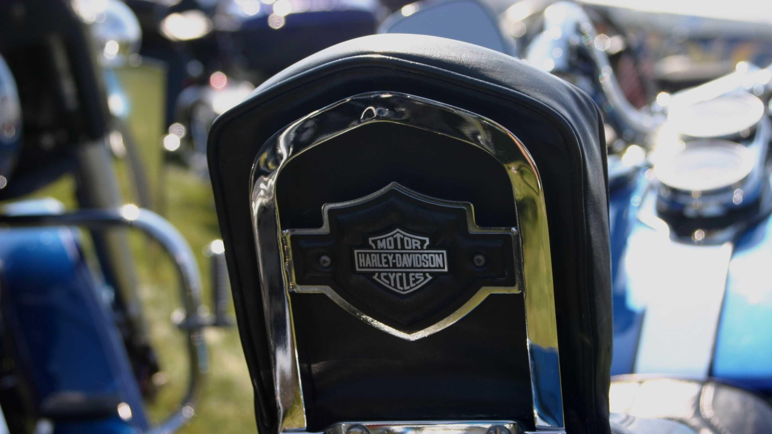 Harley0007.JPG