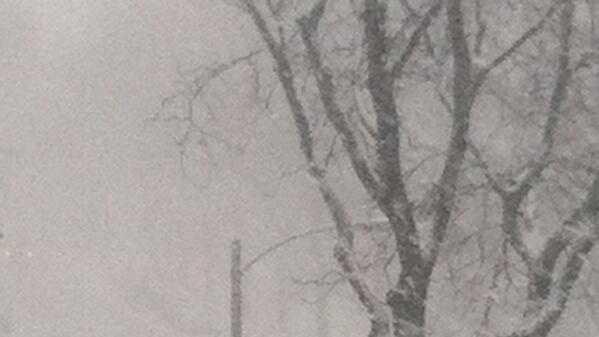 snow lakefront.jpg