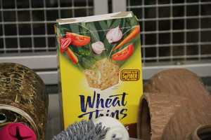 Regular boxes can be used to hold food so the animals have to open them up. This helps with enrichment.