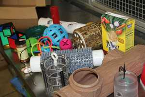 Often dog, cat, and baby toys are used.