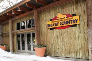 The Florence Mila Borchert Big Cat Country is just one of the stops to check out on behind the scenes weekend.