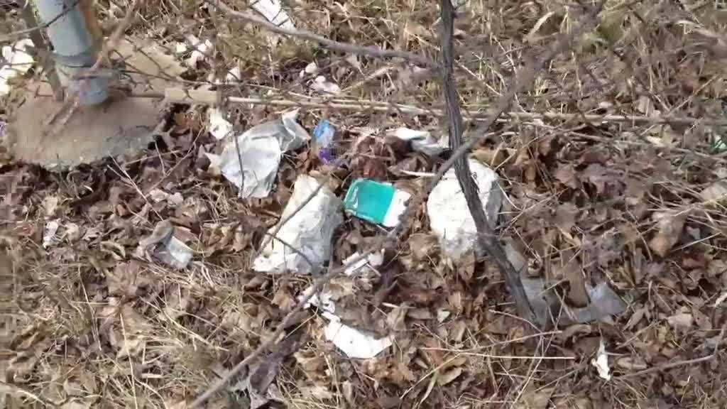(img1)Clean Up In Milwaukee County