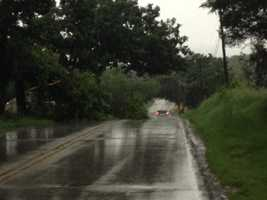 Tree down across Merrill Hills Road near Sunset in Waukesha