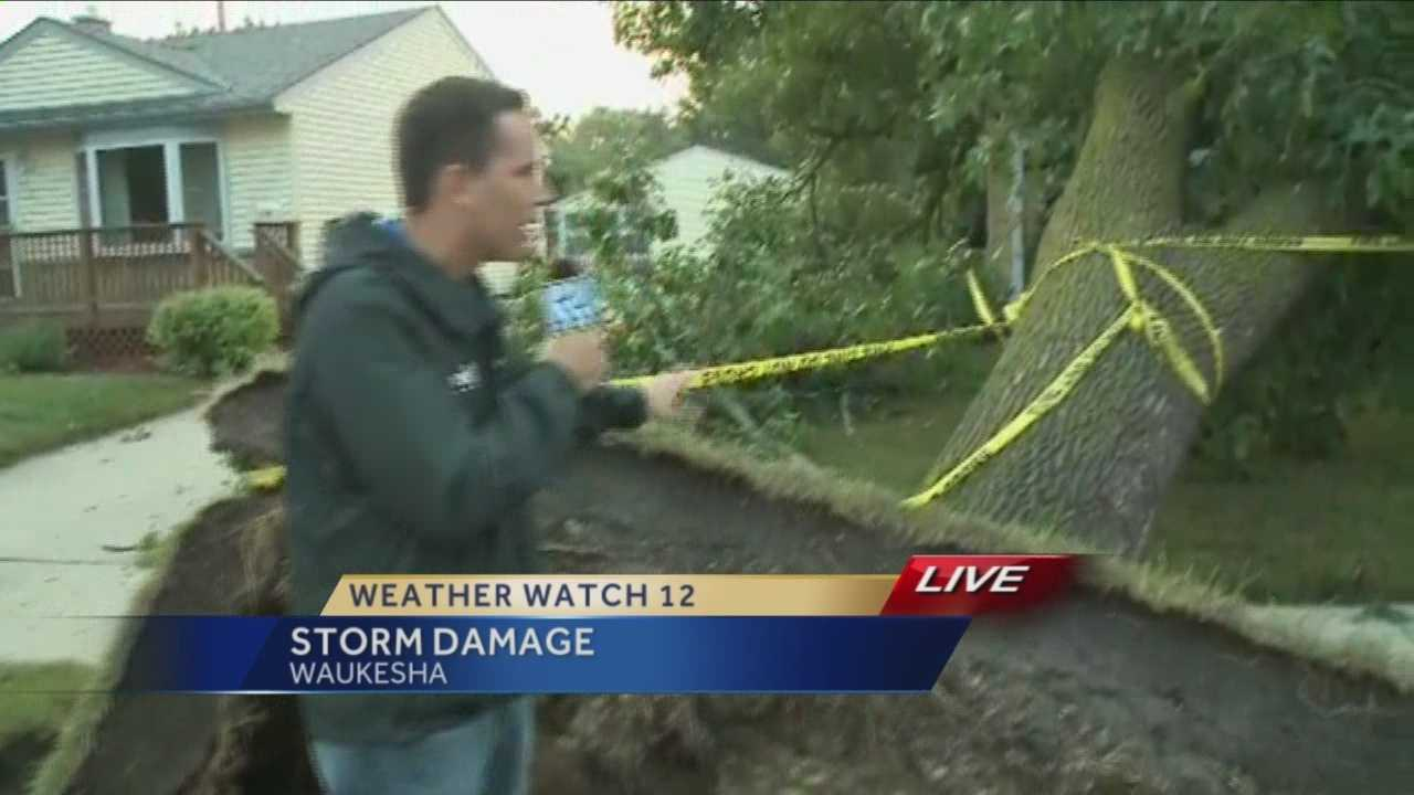Storms topple trees in Waukesha, Racine counties