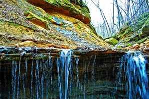 Tripp Falls Ravine, Menomonie