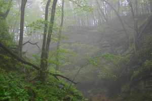 Parfrey's Glen State Natural Area, Merrimac