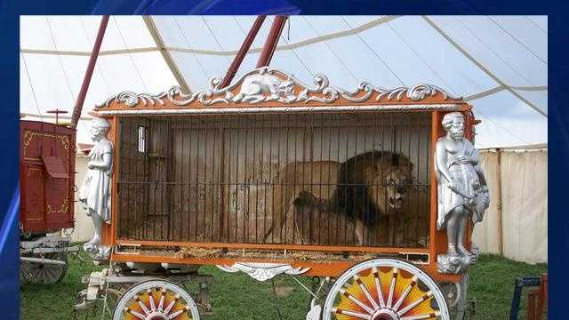 Circus Wagon Used In Movie - 27613717