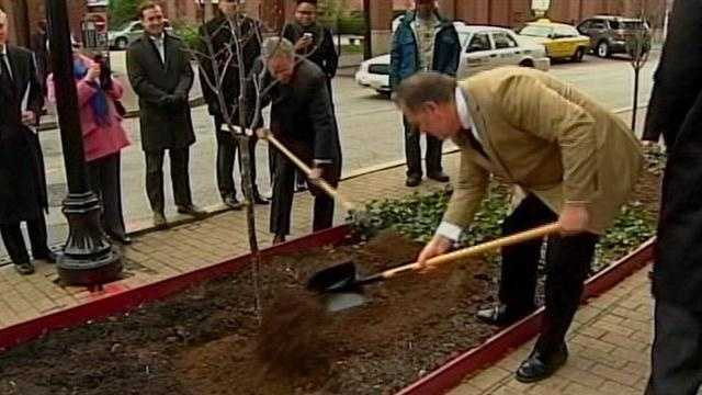 Tree planting underway in downtown Louisville