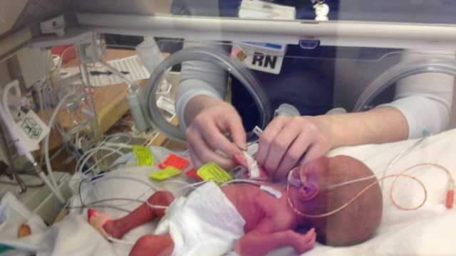 sauer newborns (1).JPG