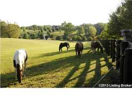 Horses can roam comfortably over these rolling hills.