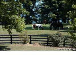 Horses will love all of this land to graze.