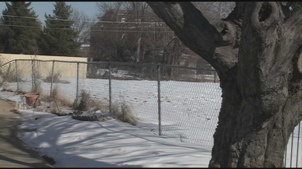 Louisville seeks ideas to improve vacant lots