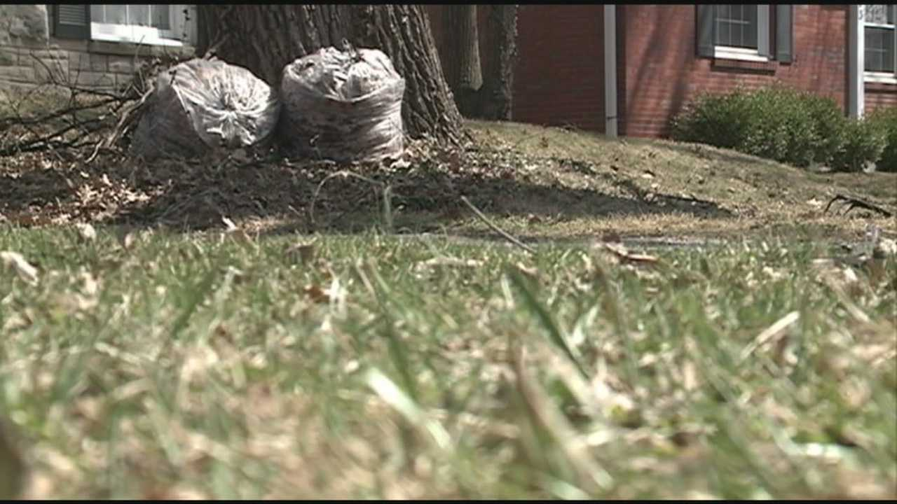 Proposal would ban putting solid waste in plastic bags