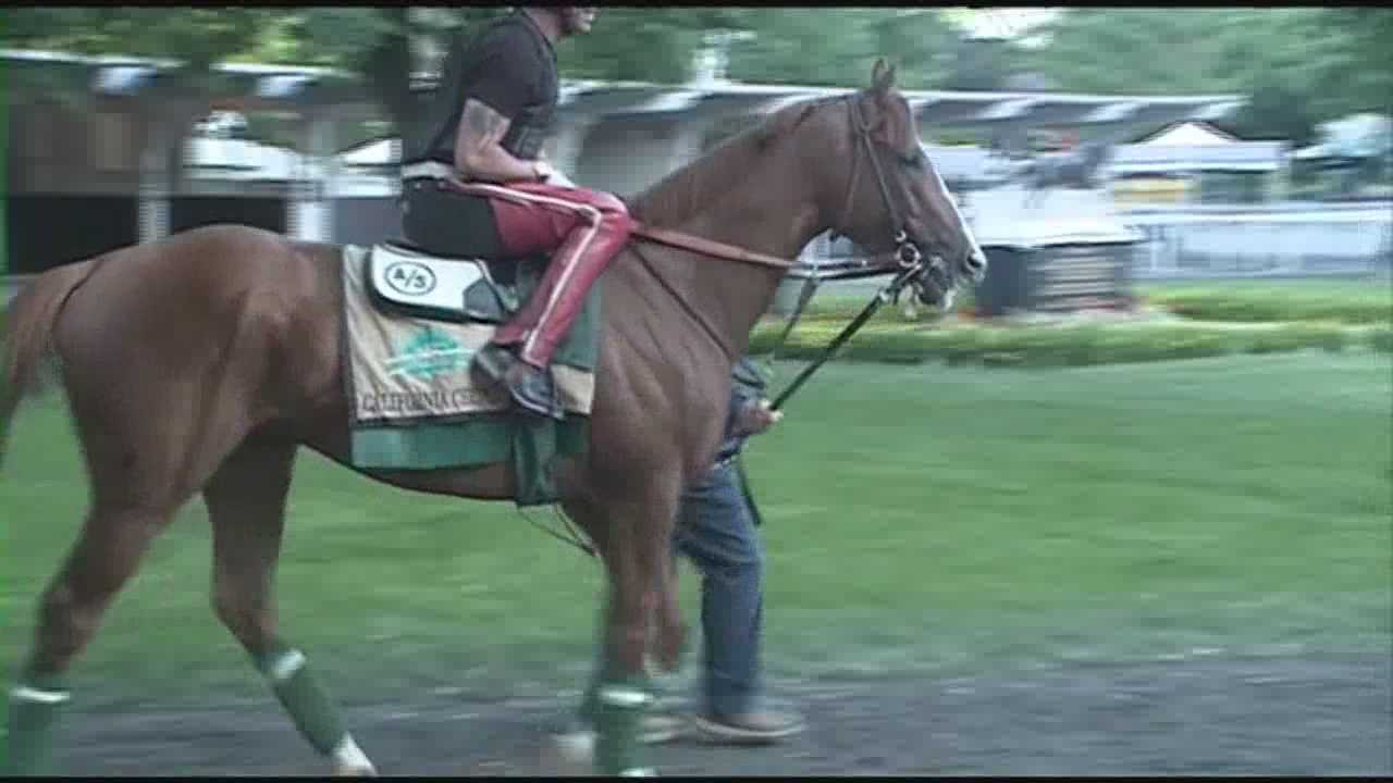 Racing fans excited for California Chrome's shot at Triple Crown