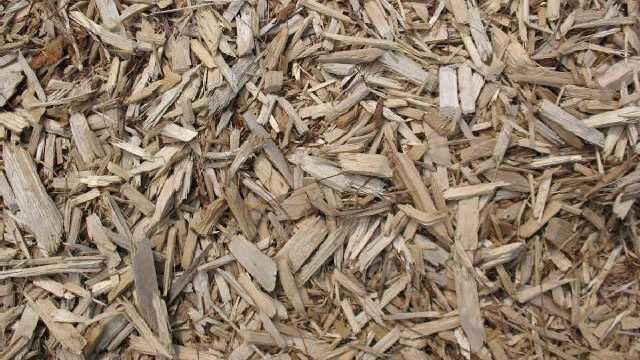 wood mulch chips