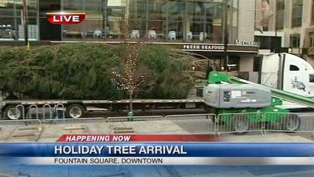 Holiday tree arrives in Fountain Square
