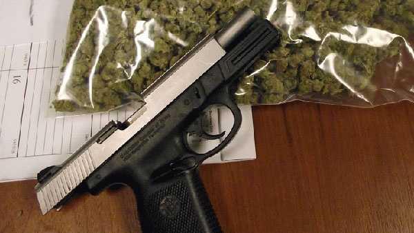 130205-guns-and-pot-found.jpg