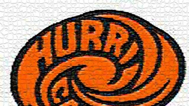 Wilmington Hurricane logo