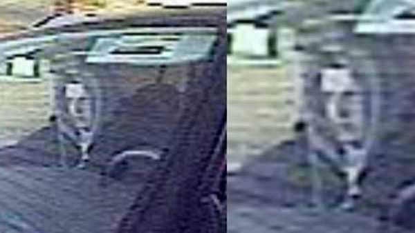 Green Twp abduction suspect image.jpg