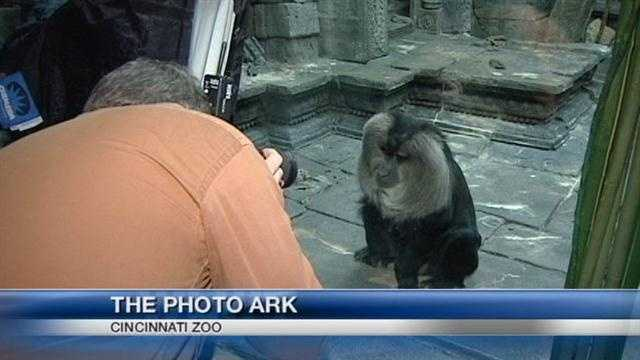 Project Ark catalogs nation's captive animals