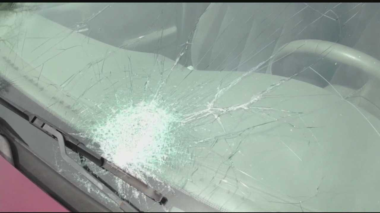 Springfield Township police say dozens of cars have been damaged after being shot with what they believe to be BB guns.