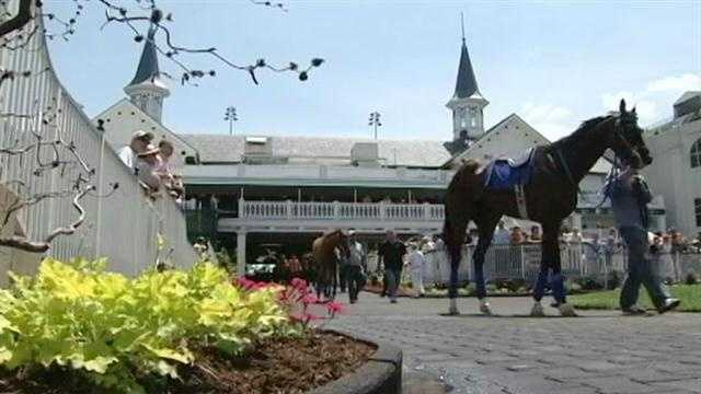 img-Pitino among owners with horses in Derby