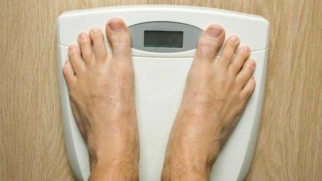 Metabolism - Generic