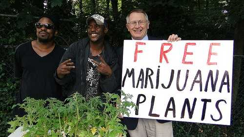 Jim Berns free marijuana