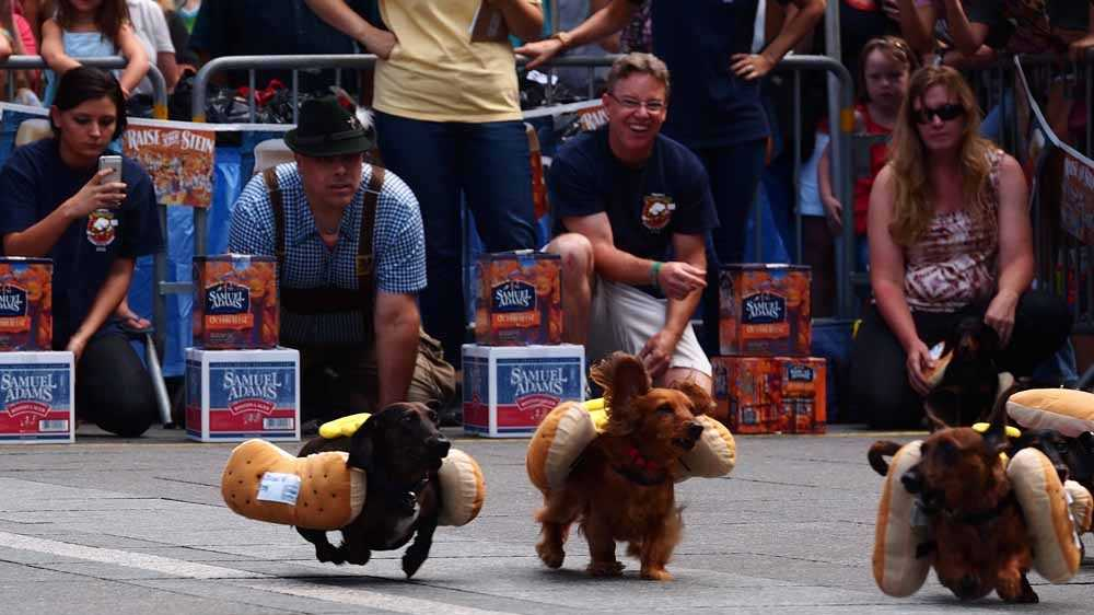 2013 Running of the Wieners (75).jpg