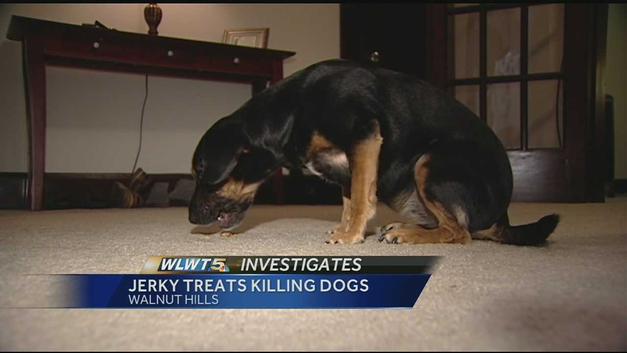 Jerky treats could be killing cats and dogs