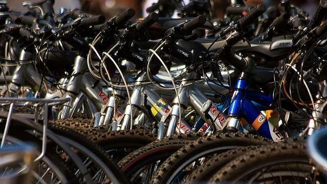 bicycles generic.jpg