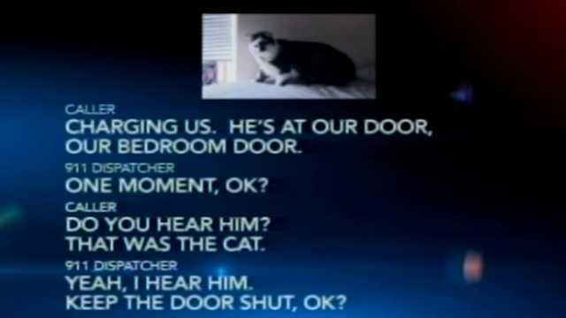03102014 portland fat cat
